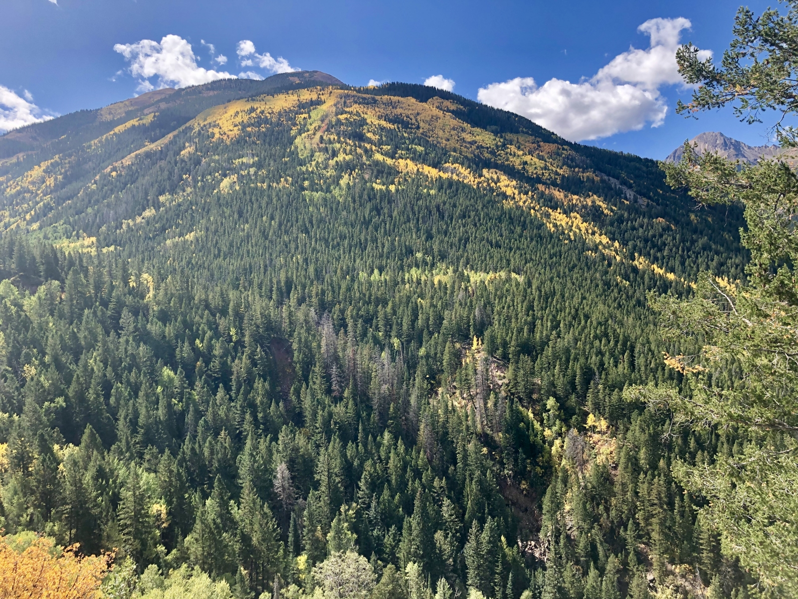 Glenwood Springs Hike
