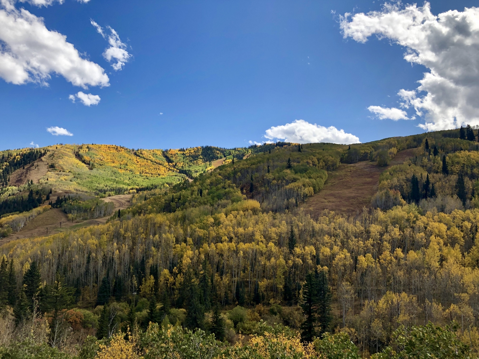Snowmass Autumn